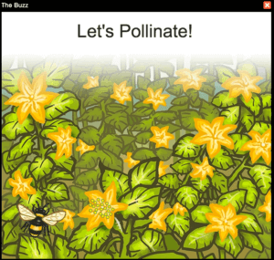 Lets Pollinate